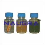 Bacteriological Test Vials