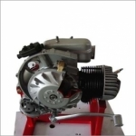 Engine model (Petro 2stroke)