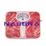 Baroness Personal Weighing Scale Laboratory Equipments Supplies
