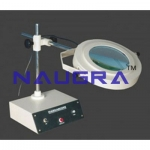 Magnascope Bench Magnifier Laboratory Equipments Supplies